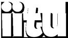 Iitu Hoiva- ja hyvinvointipalvelut Logo